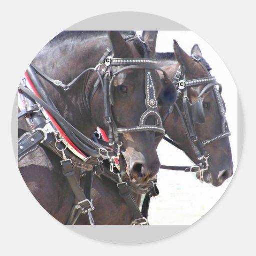 Pegatinas grandes de los caballos
