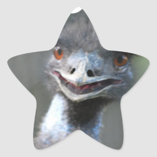 Pegatinas grandes del Emu Calcomanías Forma De Estrella Personalizadas