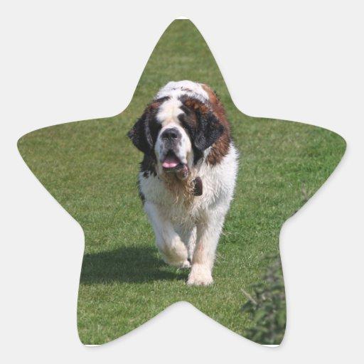 Pegatinas hermosos de la foto del perro de St Pegatina En Forma De Estrella