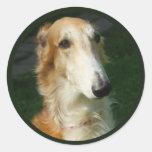 Pegatinas hermosos del perro de la foto del perro etiqueta redonda