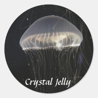 Pegatinas: Jalea cristalina Pegatina Redonda