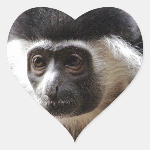 Pegatinas lindos del mono de Colobus Pegatina En Forma De Corazón