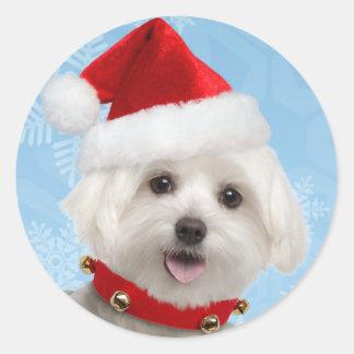 Pegatinas malteses del navidad del perrito pegatina redonda