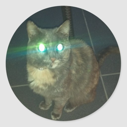 Pegatinas malvados del gato pegatina redonda