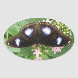 Pegatinas manchados azul de la mariposa pegatina ovalada