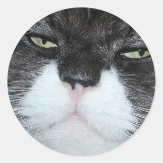 Pegatinas no divertidos del gato pegatinas redondas