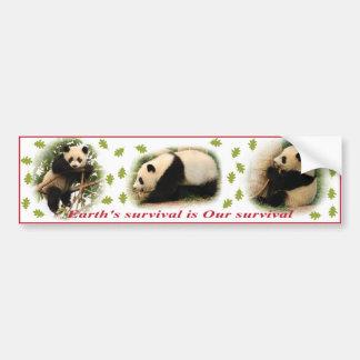 Pegatinas para el parachoques de la panda pegatina de parachoque