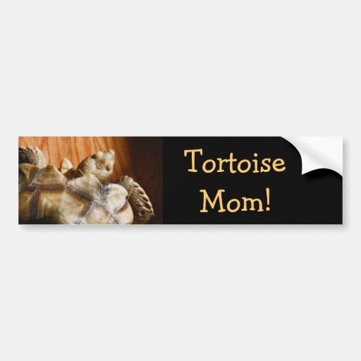 ¡Pegatinas para el parachoques de la tortuga de Af Pegatina De Parachoque