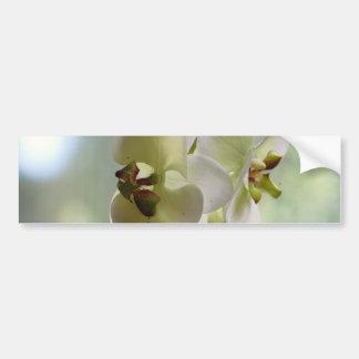 Pegatinas para el parachoques de las orquídeas que pegatina de parachoque