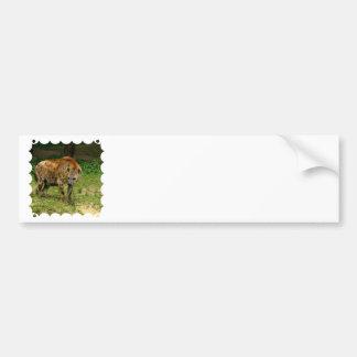Pegatinas para el parachoques del vagabundeo del H Etiqueta De Parachoque