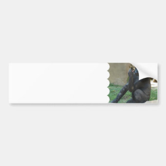 Pegatinas para el parachoques pensativas del goril pegatina de parachoque
