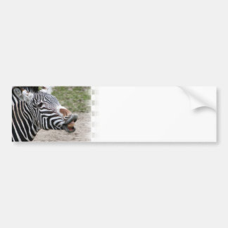 Pegatinas para el parachoques sonrientes de la ceb pegatina de parachoque