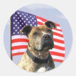 Pegatinas patrióticos del pitbull pegatina redonda