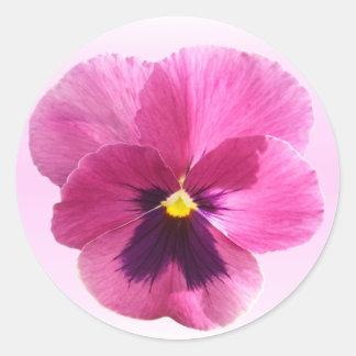Pegatinas - pensamiento rosado oscuro pegatina redonda