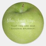 Pegatinas personalizados del profesor etiquetas redondas