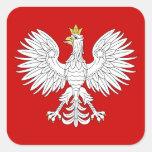 Pegatinas polacos de Eagle Calcomanías Cuadradas Personalizadas