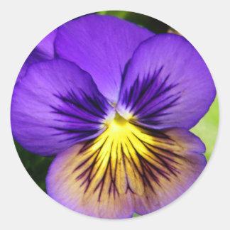 Pegatinas púrpuras bonitos del pensamiento pegatina redonda