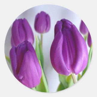 Pegatinas púrpuras de los tulipanes de Pascua Pegatina Redonda