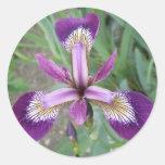 Pegatinas púrpuras del iris etiqueta redonda