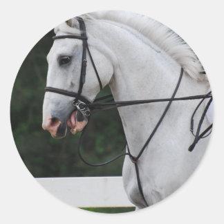 Pegatinas recogidos del caballo blanco etiquetas redondas