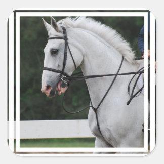 Pegatinas recogidos del caballo blanco pegatinas cuadradases