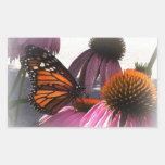 Pegatinas rectangulares - mariposa de monarca rectangular altavoz
