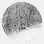 Pegatinas redondos de maderas Nevado pequeños Etiqueta Redonda