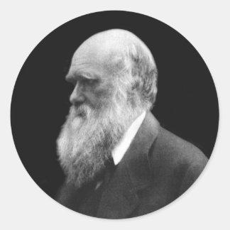 Pegatinas redondos del retrato de Darwin Pegatina Redonda