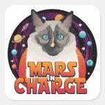 Pegatinas responsables de Marte Pegatina Cuadrada