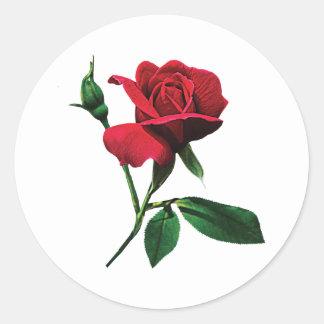 Pegatinas rojos de un capullo de rosa pegatina redonda