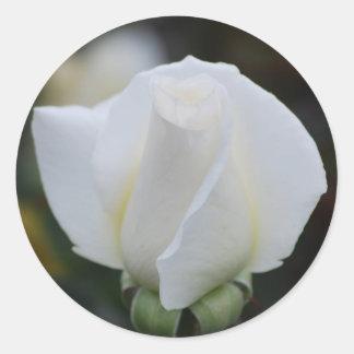 Pegatinas románticos blancos pegatina redonda
