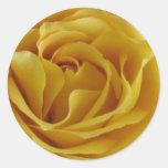 Pegatinas - rosa amarillo pegatina redonda