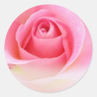 Pegatinas rosados del capullo de rosa pegatina redonda