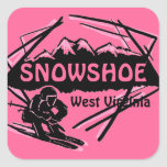 Pegatinas rosados del logotipo del esquí de Virgin