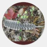 Pegatinas salvajes de la pluma de Turquía Etiquetas Redondas