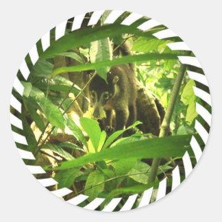 Pegatinas salvajes del Coati Pegatina Redonda