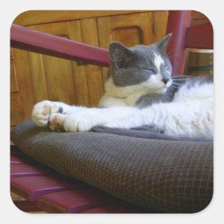 Pegatinas soñolientos del cuadrado del gato pegatina cuadrada