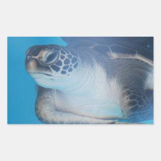 Pegatinas subacuáticos de la tortuga rectangular altavoz