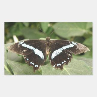 Pegatinas tropicales blancos y negros de la pegatina rectangular