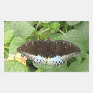 Pegatinas tropicales bonitos de la mariposa pegatina rectangular