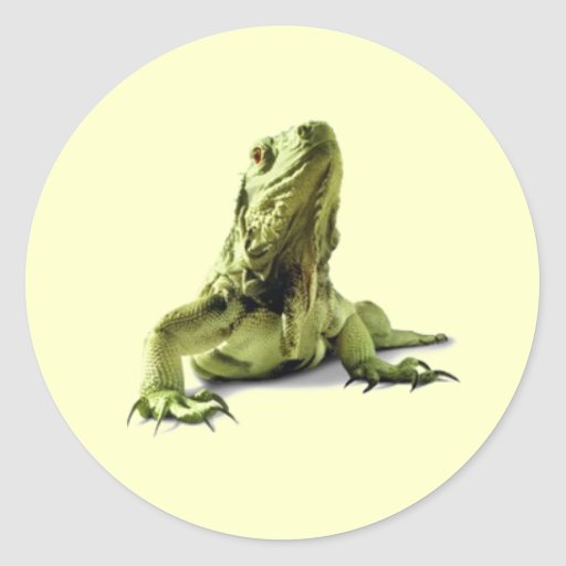 Pegatinas verdes de la iguana