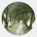 Pegatinas verdes olivas del jardín pegatina redonda
