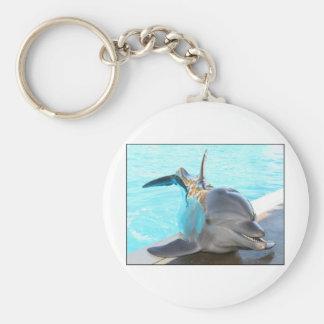 Pegue una actitud (la foto del delfín) llavero redondo tipo pin