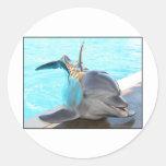 Pegue una actitud (la foto del delfín) pegatina redonda