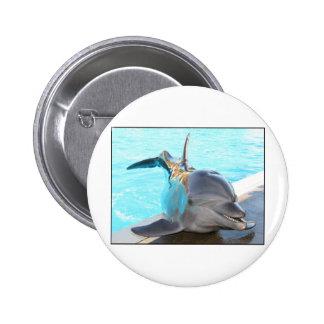 Pegue una actitud (la foto del delfín) pin redondo 5 cm