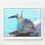 Pegue una actitud (la foto del delfín) tapetes de raton