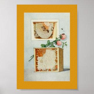 Peine de la miel del vintage, abejas, cera de abej impresiones