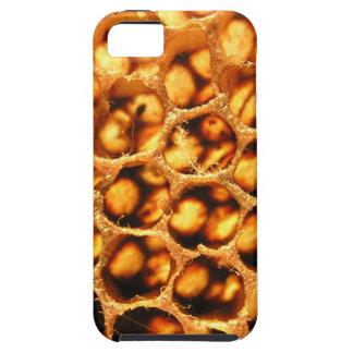 Peine de la miel iPhone 5 coberturas