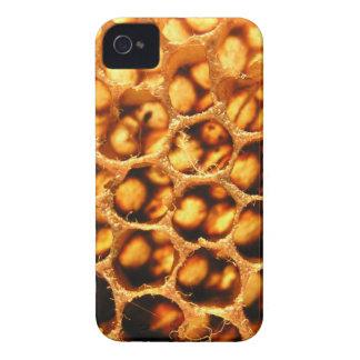 Peine de la miel Case-Mate iPhone 4 cárcasa