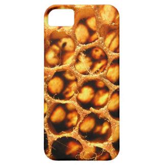 Peine de la miel iPhone 5 Case-Mate coberturas